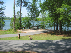 a campsite at Payne Campground, Lake Allatoona