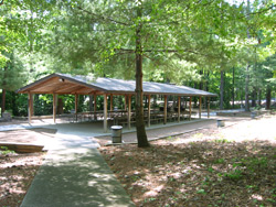 Lake Allatoona, Cooper Branch #1 picnic site